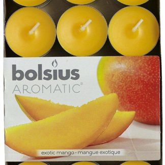24 X Bolsius Aromatic Exotic Mango 4Hr Tealights Candles